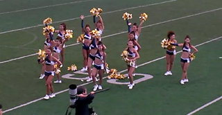 lions_cheer.png